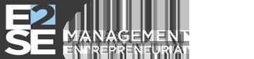 Accueil - E2SE Management - Formations BAC +2 à BAC +5