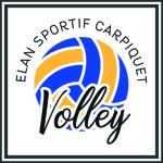 Partenariat sportif ES Carpiquet Volley ball et E2SE Management